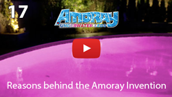 Reasons behind the Amoray Invention